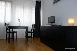 apartment_boltzmanngasse_wohnzimmer1