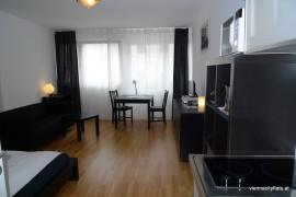apartment_boltzmanngasse_wohnzimmer3